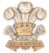 Click to info about the Leinster Forage Cap Badge